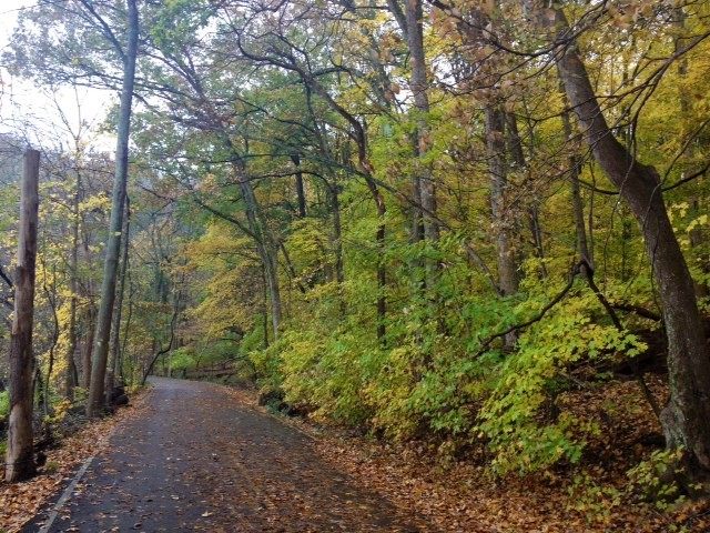 radner lake trail