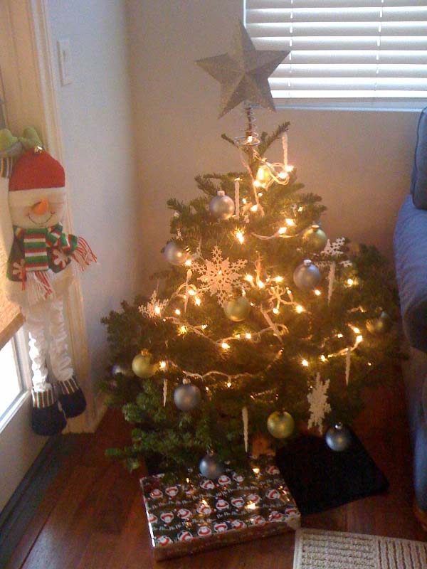 my tree after