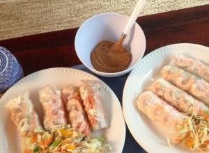 summer rolls & asian slaw