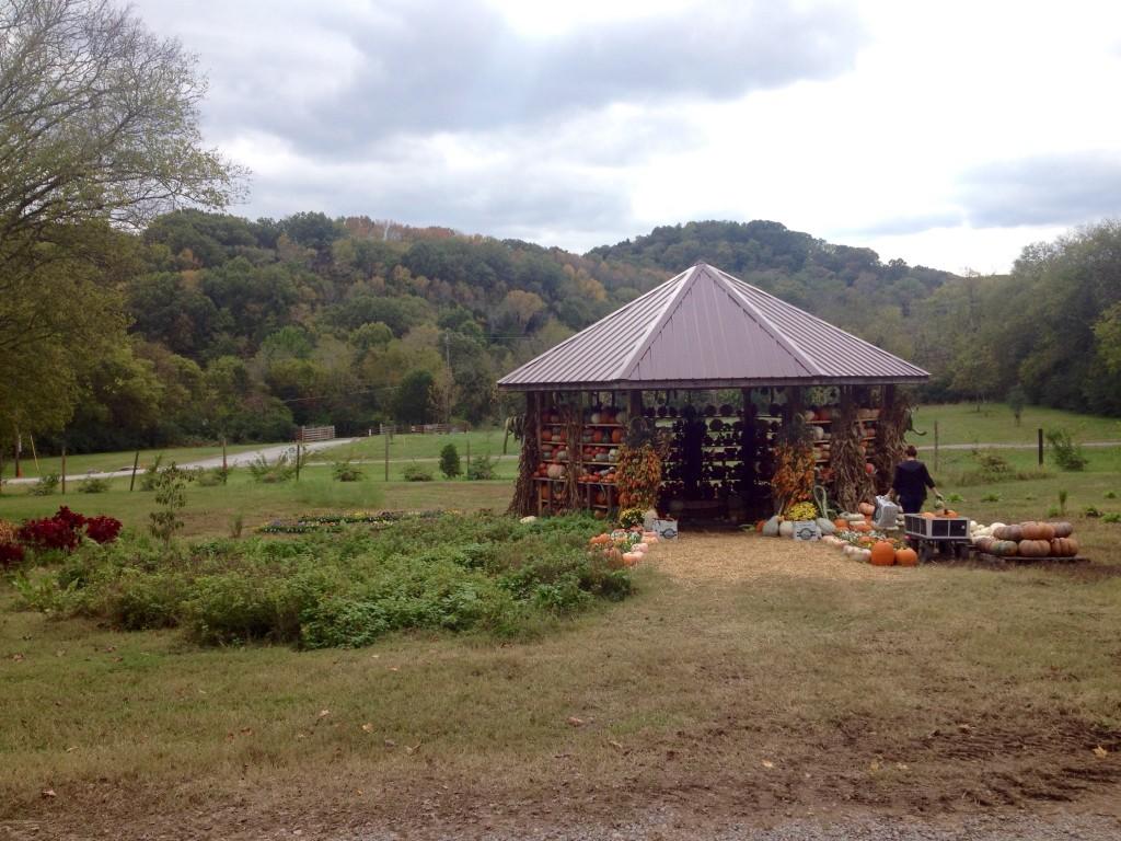 pumpkin gazebo at green acre gourmet.