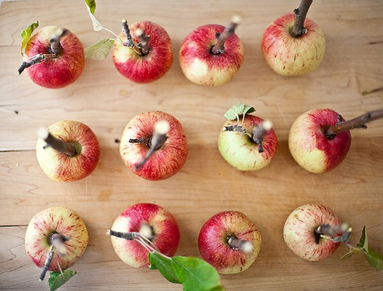 apples-party-resources-pinterest